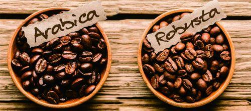 kofe-arabika-robusta_1